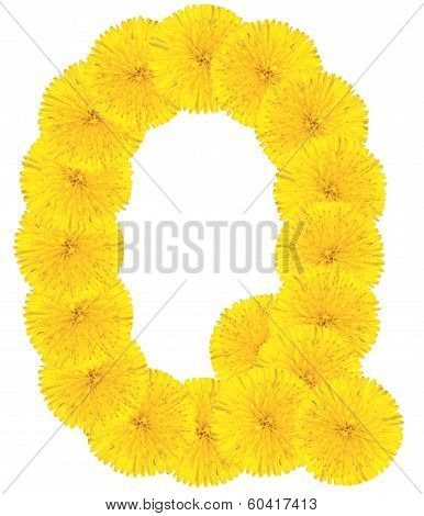 Letter Q Made From Dandelions