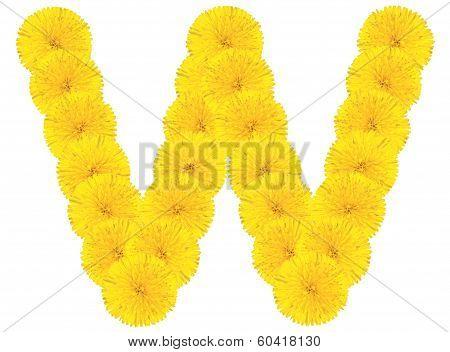 Letter V Made From Dandelions