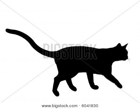 Cat Illustration Silhouette