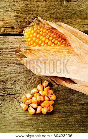 cob over wood-pannocchia su legno