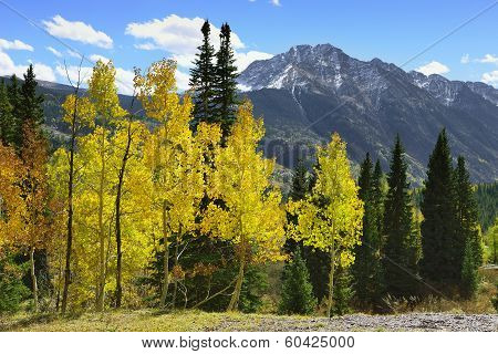 Colourful Mountains Of Colorado During Foliage Season