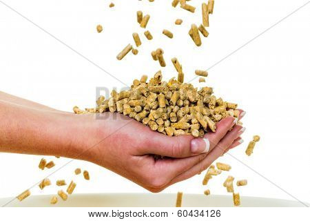 alternative energy for heating. heating with pellets already the environment.