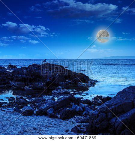 Seagulls Sit On Big  Boulders Near The Sea Watching Moon