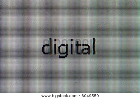 Matrix Of The Lcd Monitor With Word - Digital