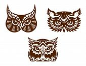 Brown and white wise old owl faces with decorative feather detail for tattoo or mascot design, vector illustration poster