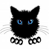 The black cat. Face of a black cat poster