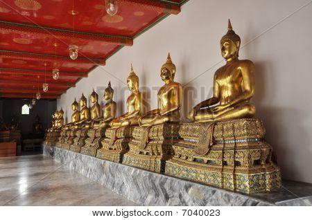Gold Buddha Line Compose Set