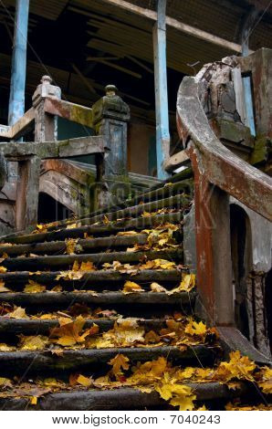 Old stairway with autumn leaves