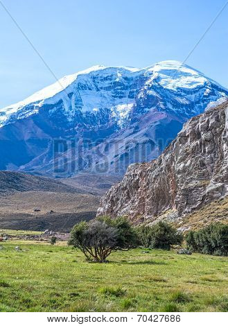 View of the Chimborazo volcano on a sunny morning poster