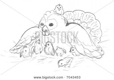 Hen with chickens, sketch. Mommy and babies. poster