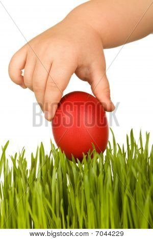 Kid Hand Holding Red Easter Egg Over Green Grass
