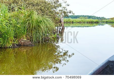 Boating In Briere Marsh, France