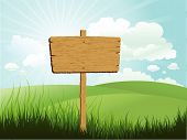 Wood Sign In Grass