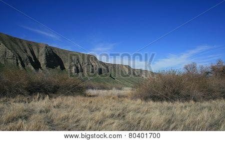 Wind Wolves Grasslands
