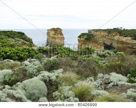 The coast near Port Campbell