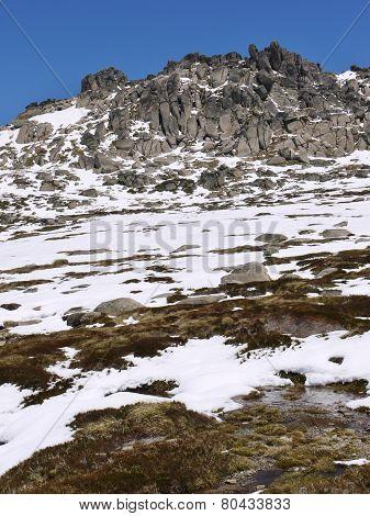 The Australian Snowy mountains