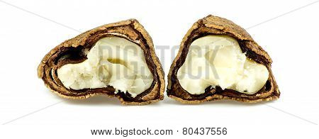 Brazil Nut Cracked Open Showing Inside Meat
