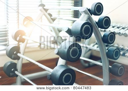 Weight Training Equipment