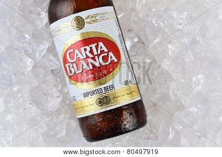 Carta Blanca Beer On Ice Closeup