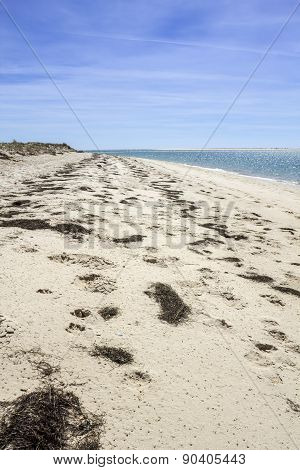 Ria Formosa wetlands natural conservation region landscape View of Armona cost beach one of the islands. Algarve southern Portugal. poster