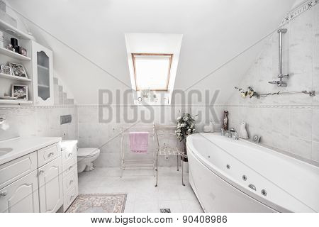Batroom interior