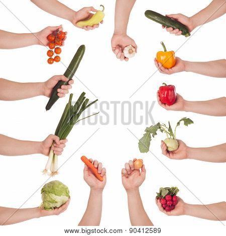 Hand Vegetable Set