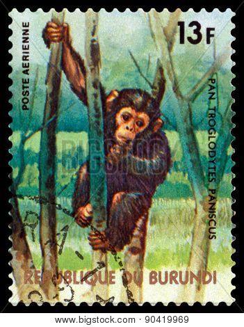 Vintage  Postage Stamp. Chimpanzee. Animals Burundi.