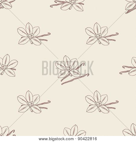 Seamless Pattern With Sketched Vanilla Flower And Beans