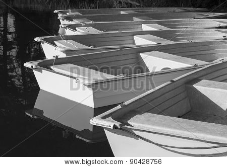 Rowboats, in Black and White