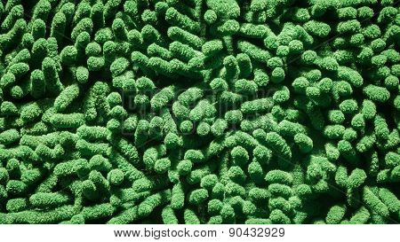 Green Cleaning Feet Doormat Or Carpet Texture