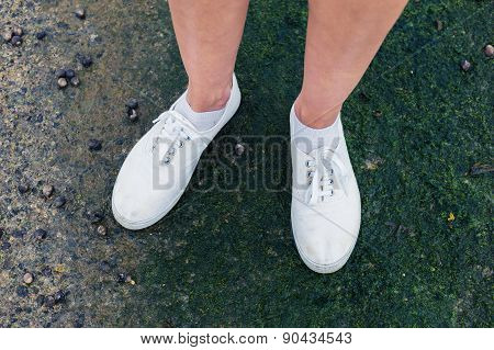 Feet Of A Woman Standing With Whelks