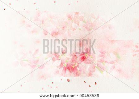 Flower (rangoon Creeper) Watercolor Illustration.