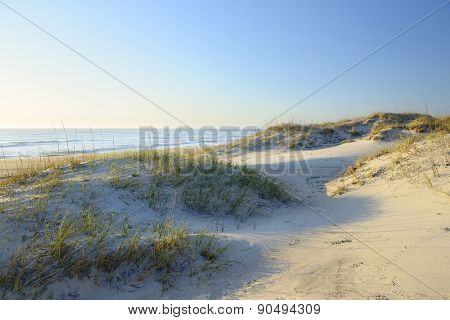 Sand Dunes in Early Morning Sun Light
