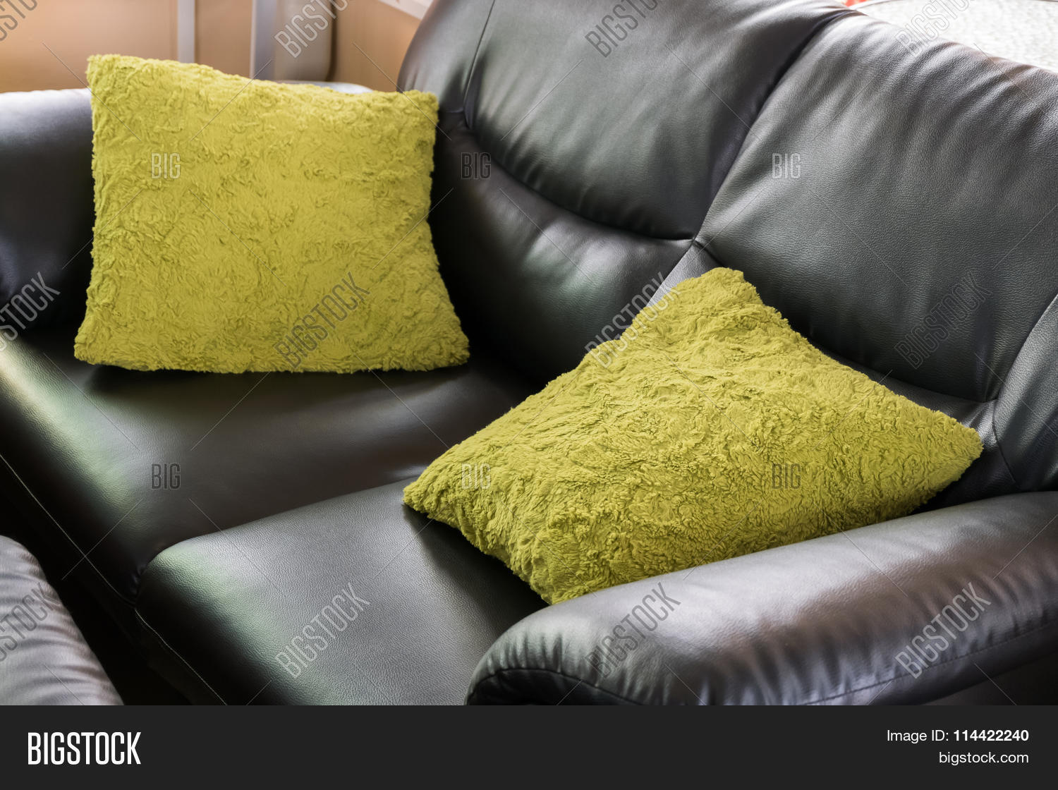 Black Leather Sofa Image Photo Free Trial Bigstock