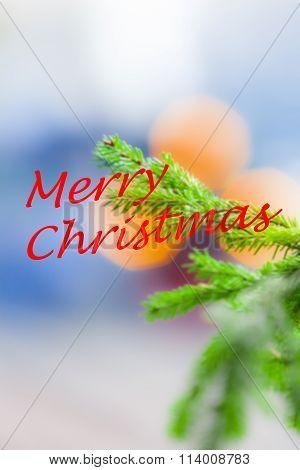 Colorful Christmas Wish