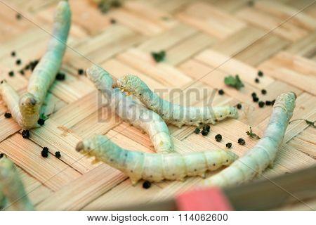 Close Up Silkworms Eating In Threshing Basket