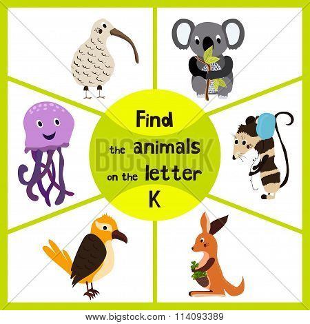 Funny Learning Maze Game, Find All 3 Of Cute Wild Animals To The Letter K, The Australian Kiwi Bird,