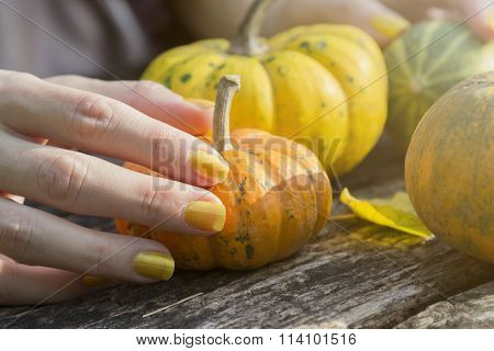 Female hand holding an orange gourd at the table in the park
