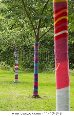 Cozy Trees in a Line
