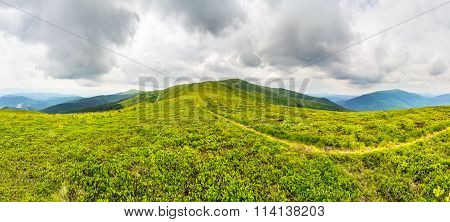 Path Among The Grass On Mountain Top