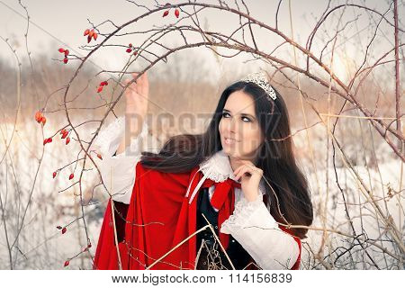 Winter Princess with Rosehip Branch