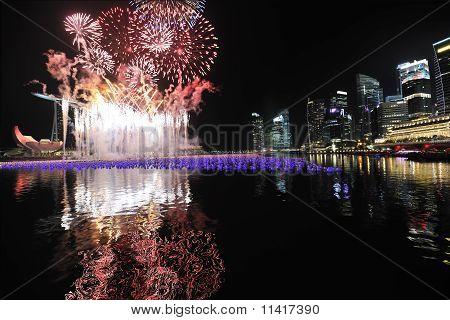 Marina Bay Singapore Countdown 2010