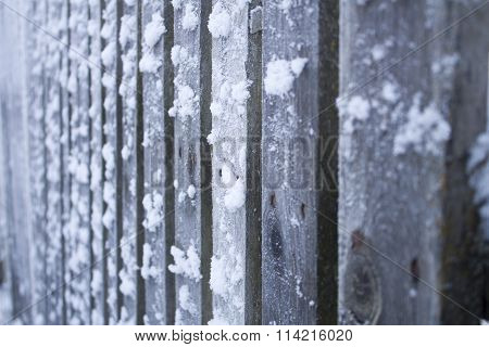 Frozen wooden fence, shallow depth of field