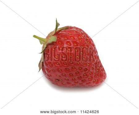 Sweet Strawberry, Isolated