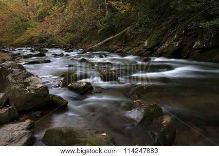 Natahala Flowing in Autumn
