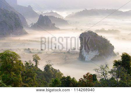 Morning mist at Phu Lang Ka Phayao Thailand poster