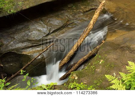 Tranquil stream cascading over branches at Hocking Hills State Park Ohio.