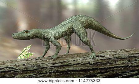 Hesperosuchus (crocodylomorph)