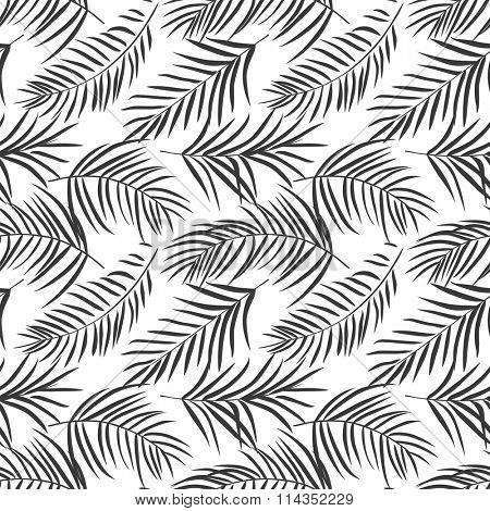 tropical palm leaves isolated on white. Seamless pattern. Vector illustration