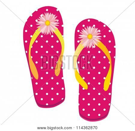 vector illustration of beach flipflop